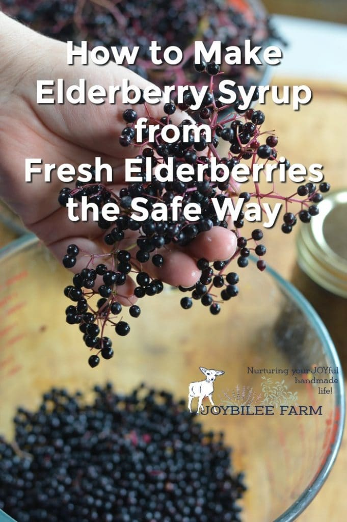 Elderberry syrup from fresh elderberries