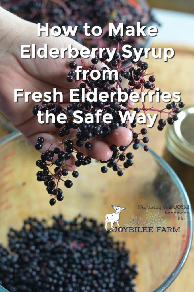 Elderberry syrup from fresh elderberries