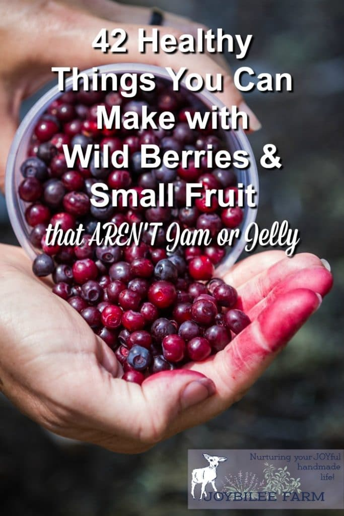 Huckleberries and wild berries