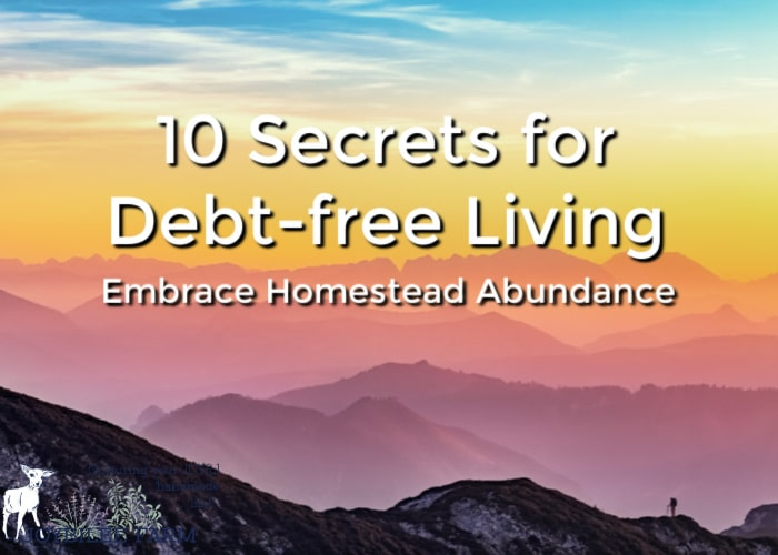 Debt free living is a lifestyle is full of homestead abundance.Take action to become debt-free, flip the switch in your mind and begin to see abundance in your life.