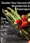 Asparagus and strawberries in a metal basket
