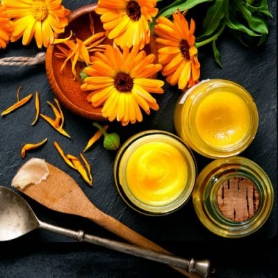 Make This Easy Calendula Ointment For Your First Aid Kit