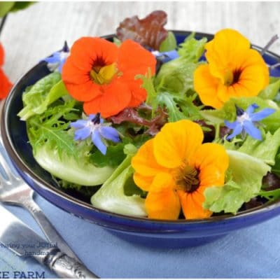 15 Things to Make with Edible Flowers