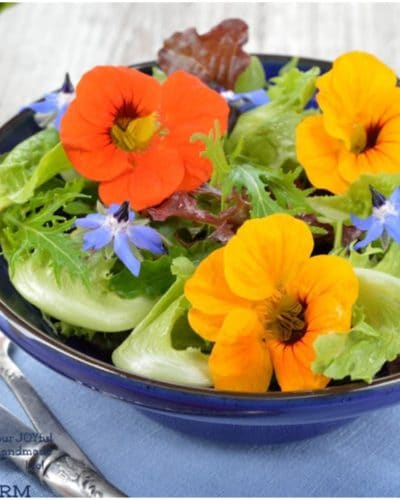15 ways to use edible flowers