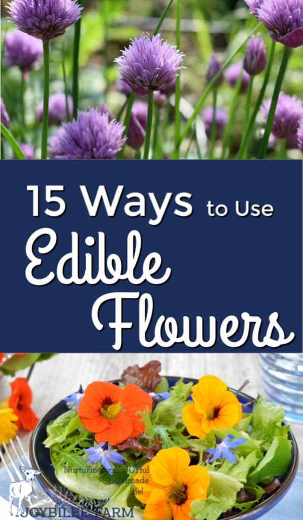 use edible blooms