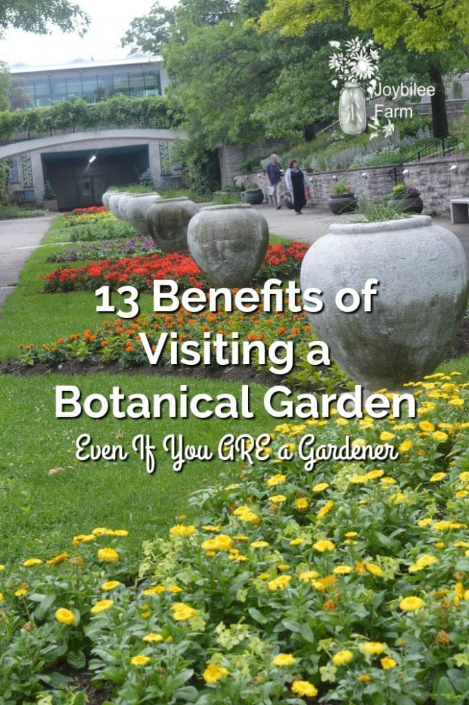 Gardeners of all levels can benefit from visiting a botanical garden during any season.  Botanical gardens are not just for city dwellers to connect with green spaces.  They also provide inspiration, education, and wonder for those who have their own garden at home.