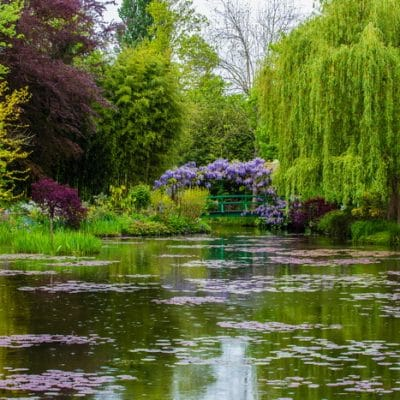 13 Benefits of Visiting a Botanical Garden Even If You ARE a Gardener