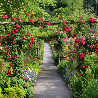 9 of Canada's Best Botanical Gardens Every Gardener Should See Once, At Least