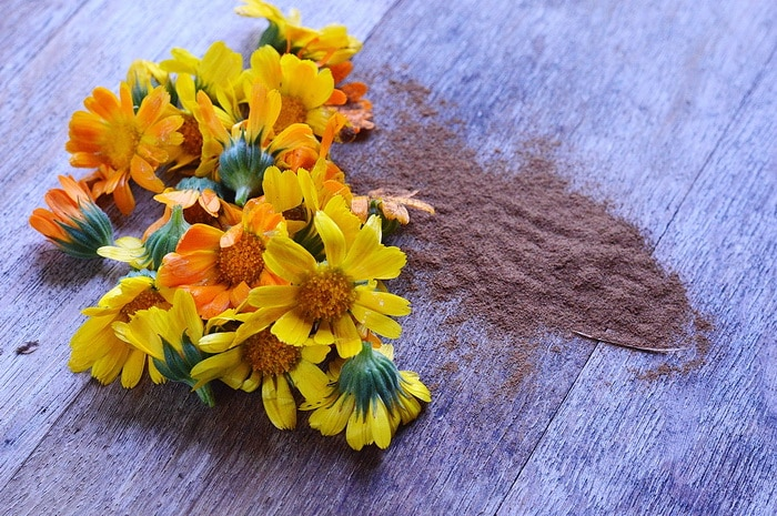 cinnamon on a table with yellow flower petals. cinnamon in the garden