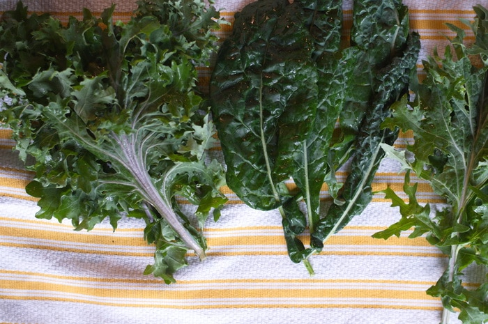 3 different types of freshly washed kale