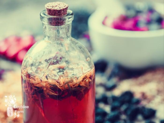antiviral herbs tincture