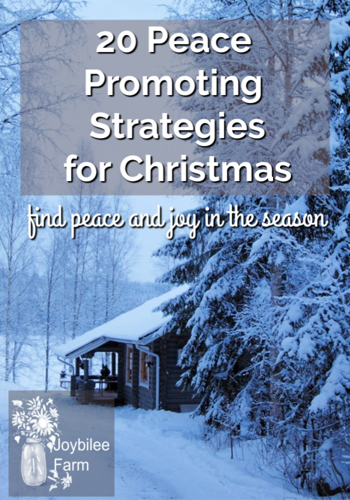 20 stress relief strategies you can do to keep your sanity and create a stress free holiday season. Don't get caught up in the hype. Start planning early to have your most peaceful, least stressful Christmas ever.