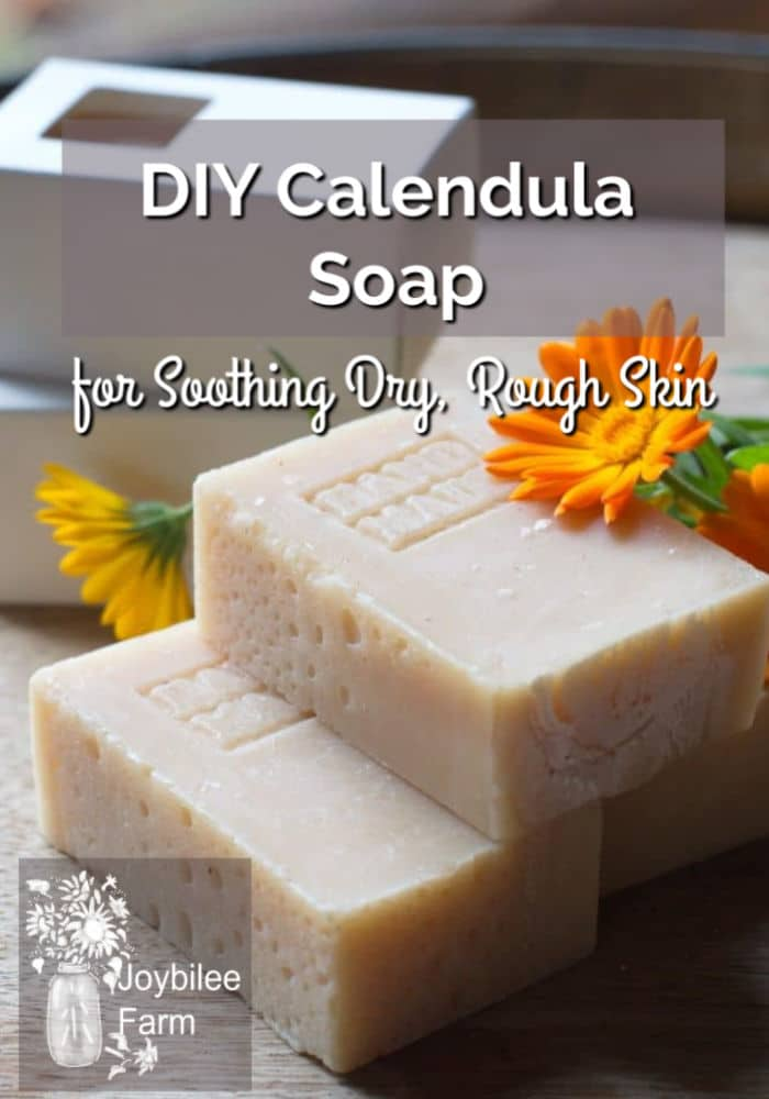 Calendula soap is a healing bar of soap for soothing dry, rough skin. Terrific after a day of working in the garden or for use during the dry winter months when hands tend to become chapped.