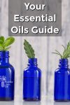 Essential oil bottles with fresh herbs sticking out