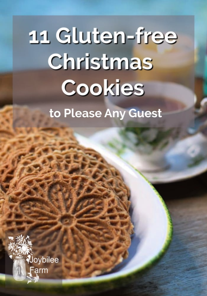 Snacking on holiday treats may be as popular with your family as the main course. These gluten-free Christmas cookies will please everyone at the table.