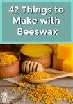 beeswax, bee pollen, honey dipper and wooden spoon