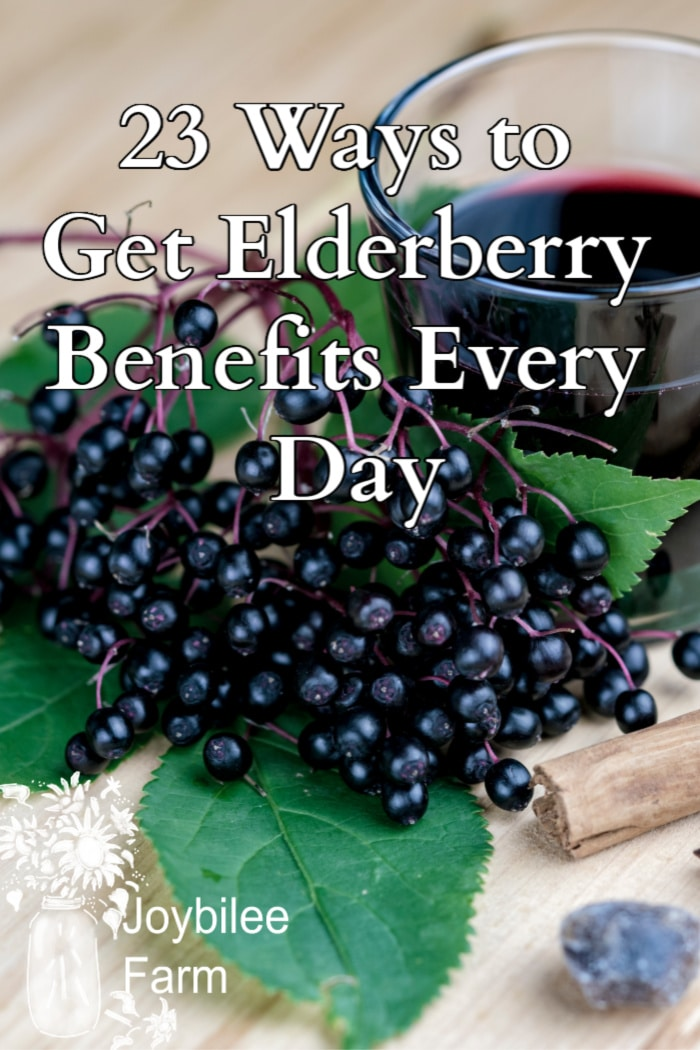 enjoy all the elderberry benefits any day of the year