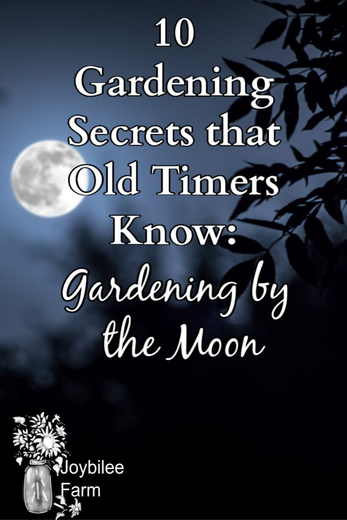 "image of the moon with silouetted leaves and the text ""10 gardening secrets that old timers know: gardening by the moon"""