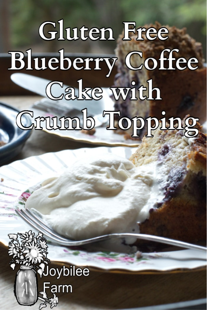 blueberry coffee cake on a serving plate with whipped cream