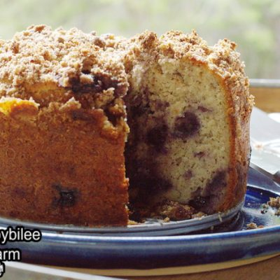 Gluten Free Blueberry Coffee Cake with Crumb Topping