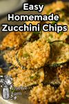 breaded and cheesed zucchini chips