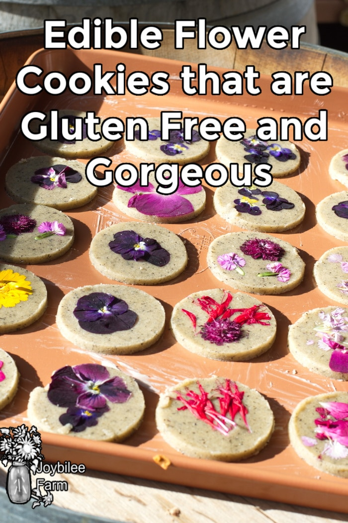 gluten free flower cookies ready for baking
