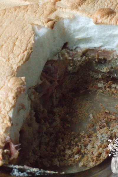 sliced rhubarb custard, still in pan